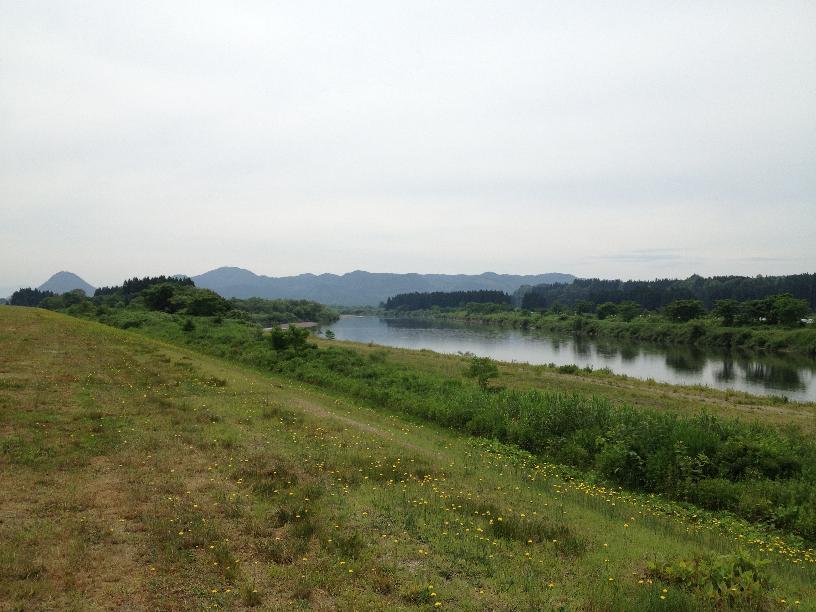 雄物川ポタリング