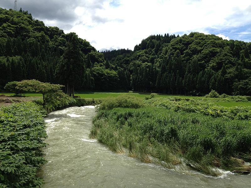思い出の川