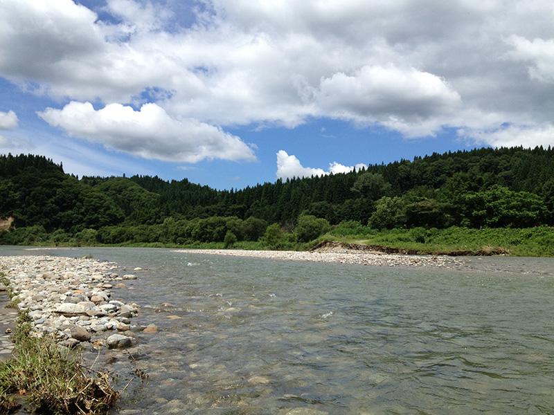 河辺の清流