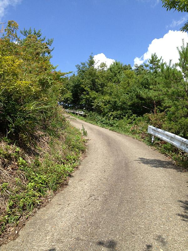 山道の登り道
